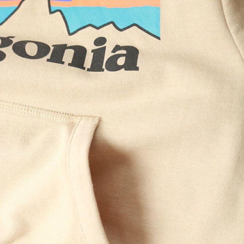 patagonia [パタゴニア] キッズ ライトウェイト グラフィック フーディ スウェットシャツ [63025] PLEK
